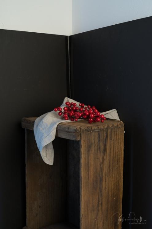 Julie Powell_Dark & Moody-22